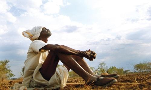 Rajasthan-Farmer